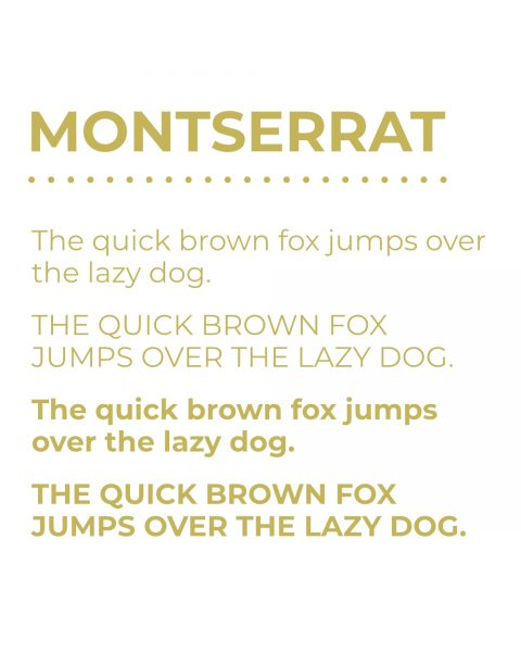 Secondary Typeface - Montserrat
